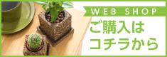 ImaNiwa- インドアガーデニング プランター インテリア -オフィシャルサイト-